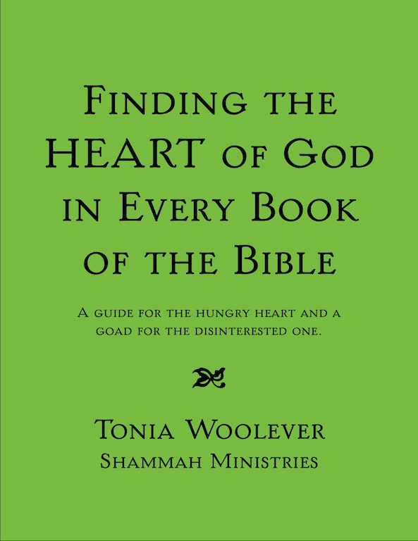 Finding The Heart of God In Every Book Of The Bible